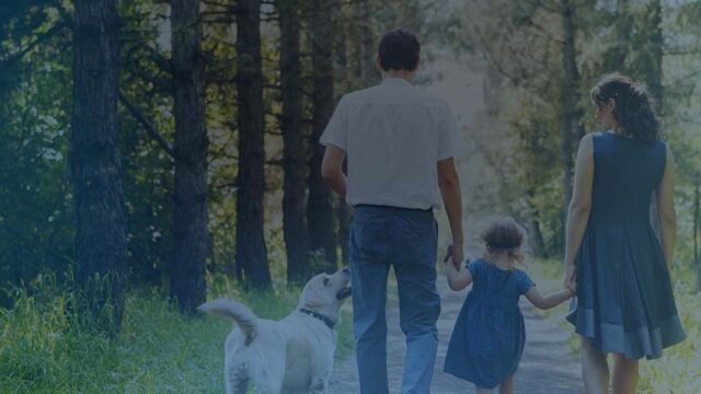 Family life insurance from 20p-a-day